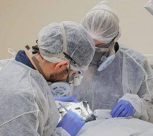 Remoção segura amálgama dental